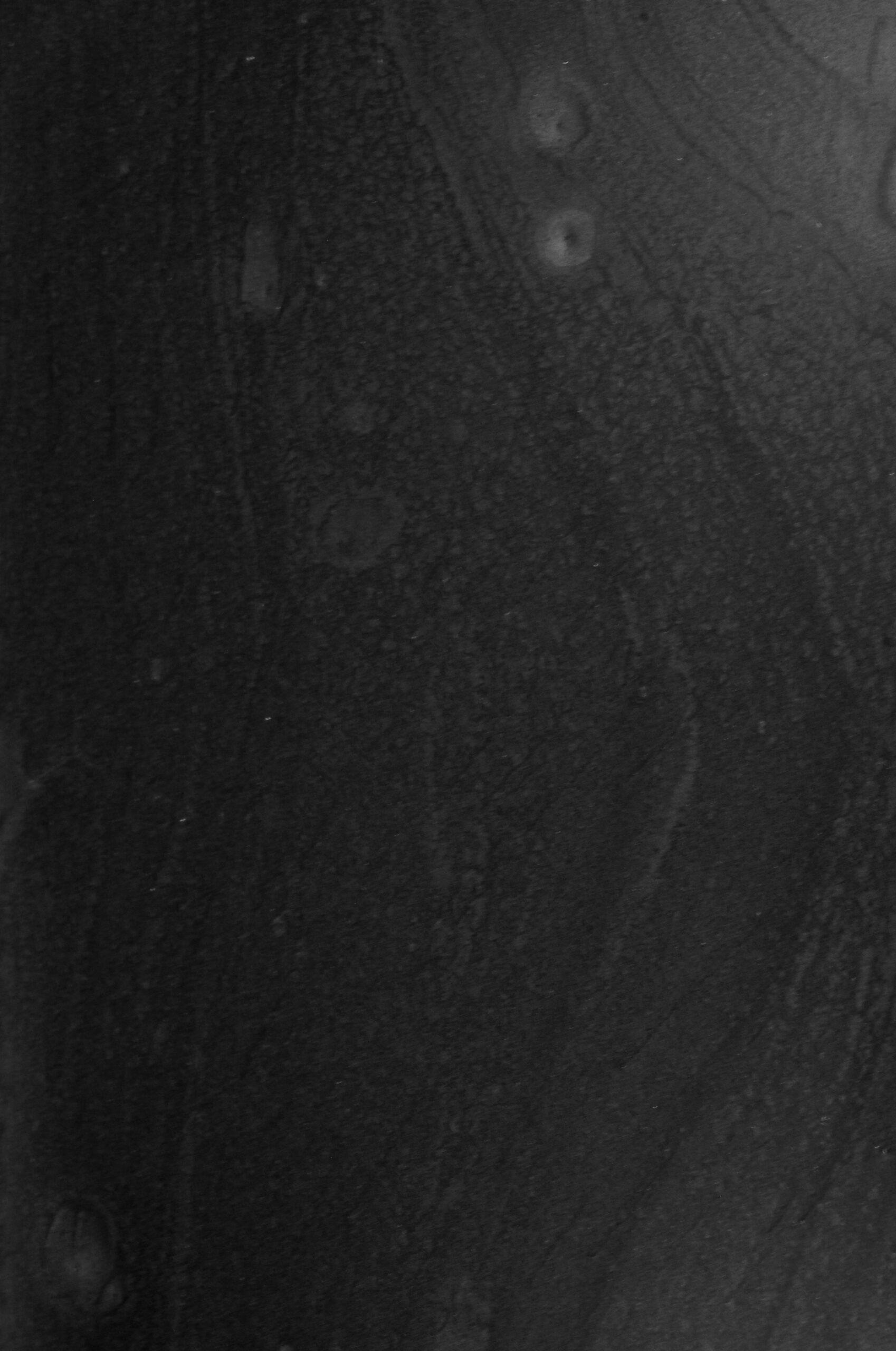 Metallic farvepigment Black Pearl